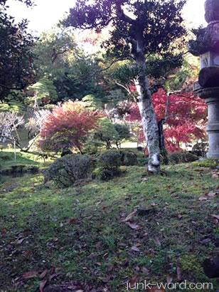 成田山新勝寺(なりたさんしんしょうじ)紅葉
