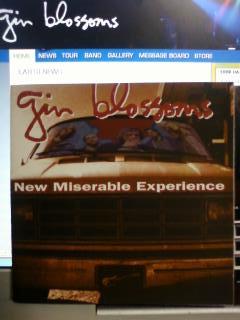 ジン.ブロッサムズの「New Miserable Experience」