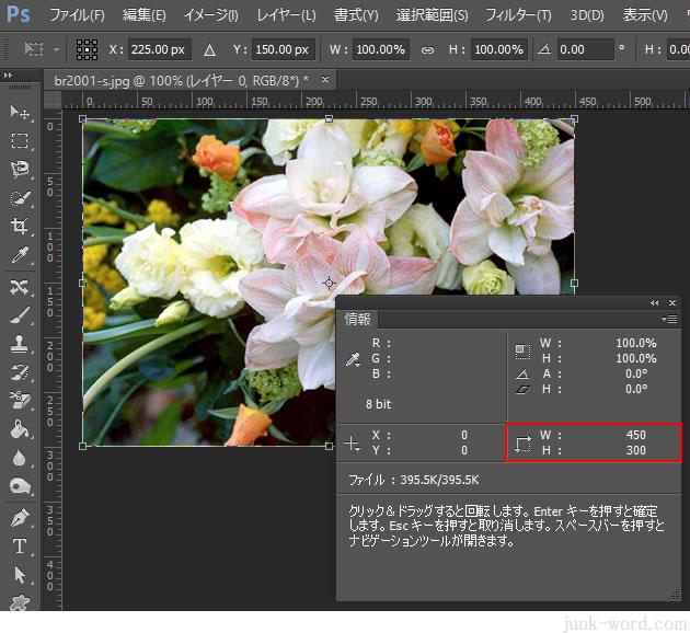 情報パネルでも写真のサイズを確認できる
